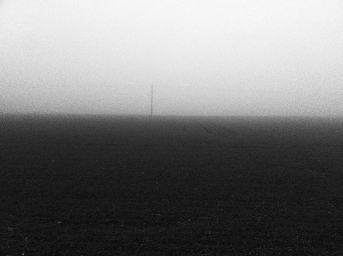 The end of a misty day, farmland captured with an iPhone 4.