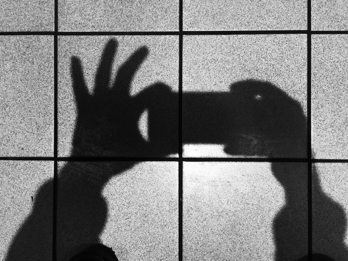 A silhouette of a cockatoo eating a large bar of choc? Or the shadow of my hand holding my phone?