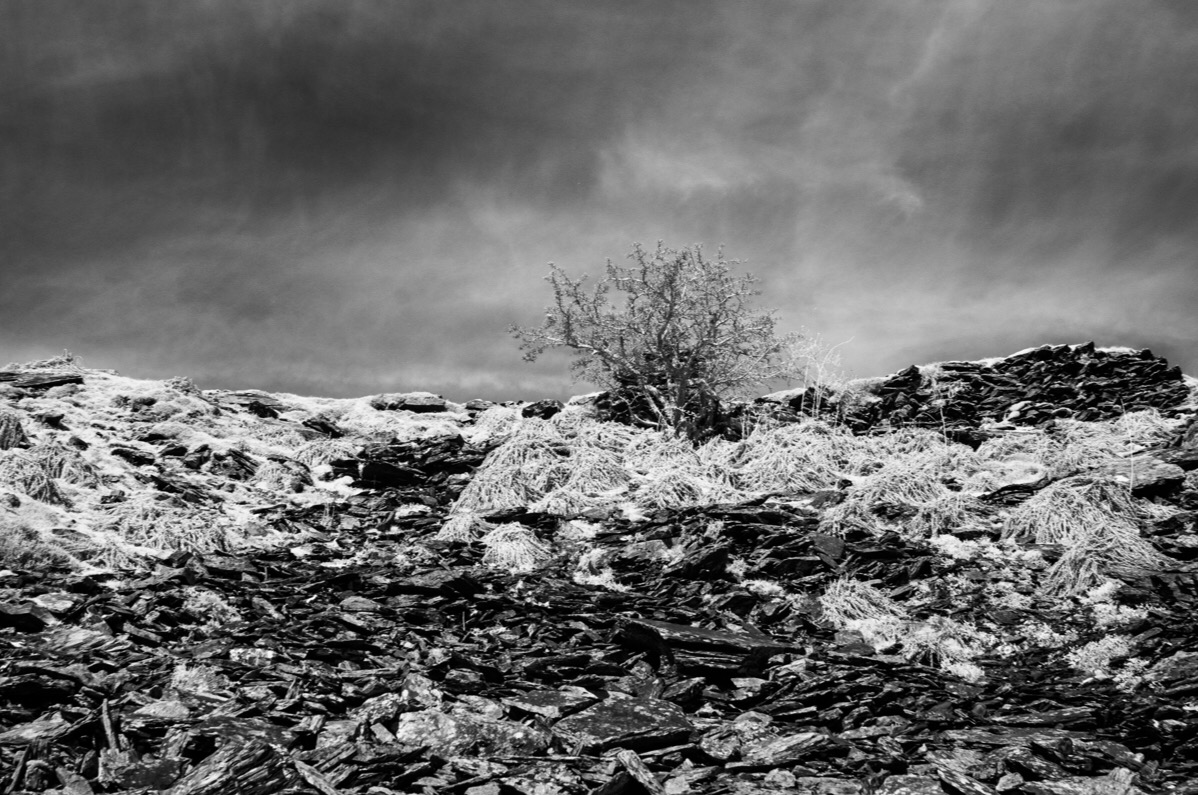 Abandoned Slate Quarry In Infrared.