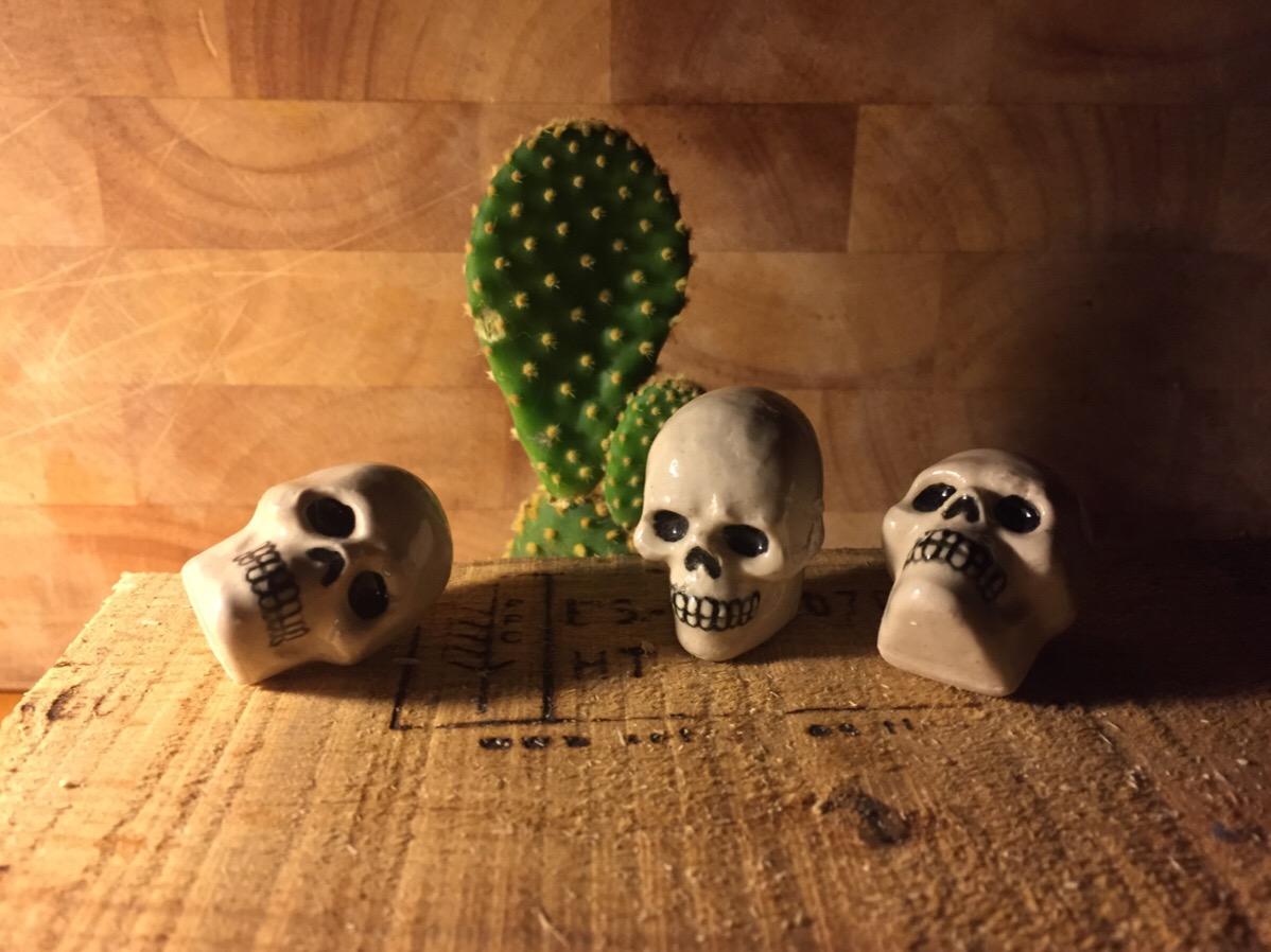 Cactus and skulls, a tabletop still life for my Ceramic Pinhole Camera.