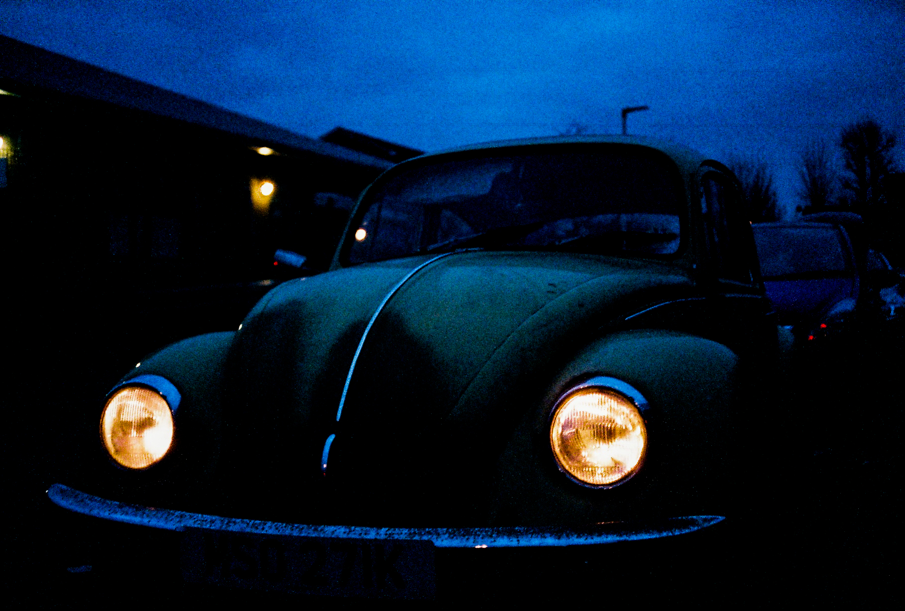 Beetle In The Blue Hour - Olympus 35RC and Fujicolour Superia.